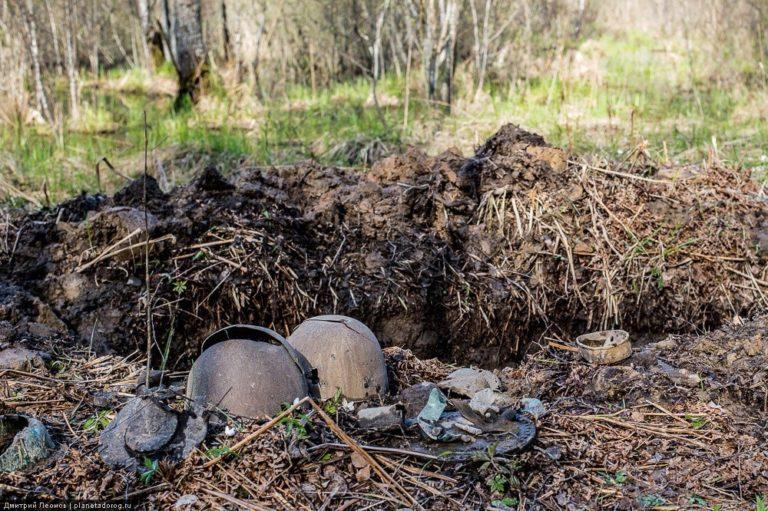 Обнаружены останки красноармейца, считавшегося пропавшим без вести: поиски родственников привели в Марий Эл