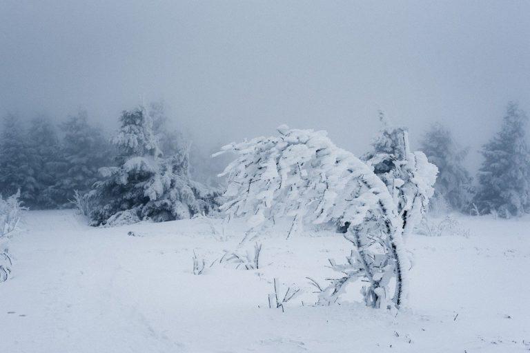 На Марий Эл завтра обрушится сильный снегопад и метель
