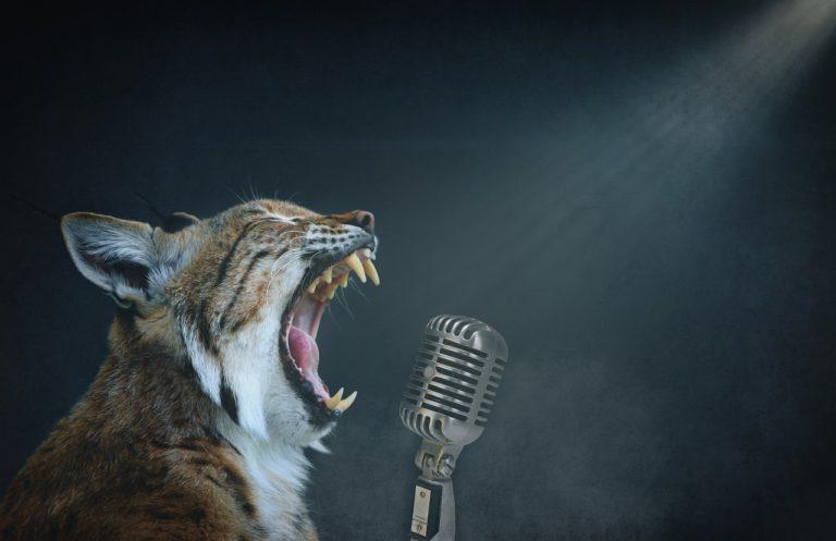 День очкарика и День микрофона могут отметить сегодня жители Йошкар-Олы