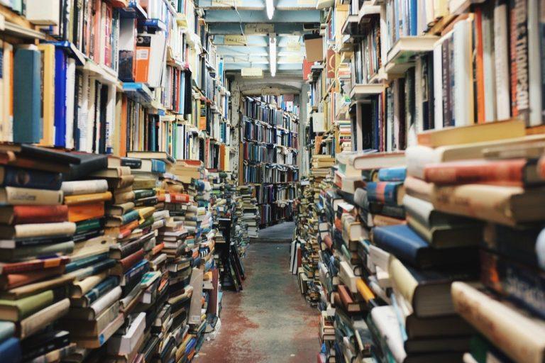 Сегодня йошкаролинцам можно отпраздновать Всемирный день книги и День кактусовода