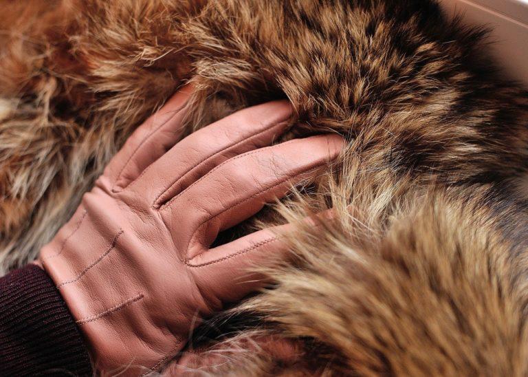 Пенсионерка из Марий Эл купила у мошенницы две искусственные шубы за 55 тысяч рублей, думая, что они норковые