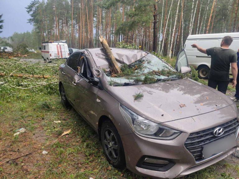 В Марий Эл спасатели расчистили дорогу и освободили автомобиль Hyundai от упавших деревьев