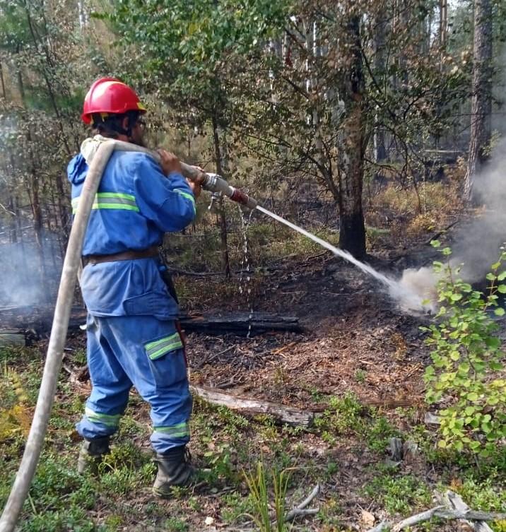 В Марий Эл за сутки произошло 6 пожаров