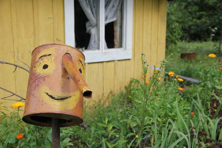 В пригороде Йошкар-Олы из садового домика пропали продукты питания, чайник, блендер и сковородка